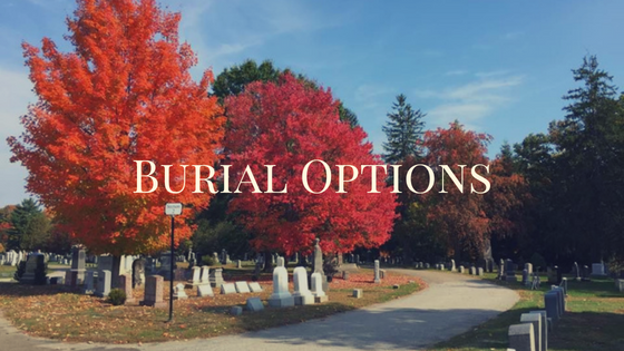 Above-Ground vs In-Ground Burial